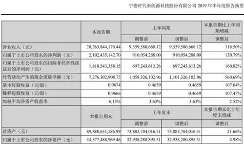 宁德时代上半年实现营收202.6亿元 同比增长116.5%